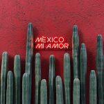 Città del Messico: tra maestosità e bellezza. 5 Curiosità da sapere.